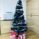 Christmas Tree Mason